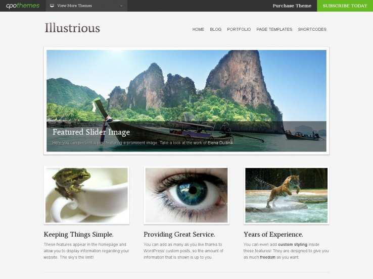 Illustrious WordPress Portfolio Theme