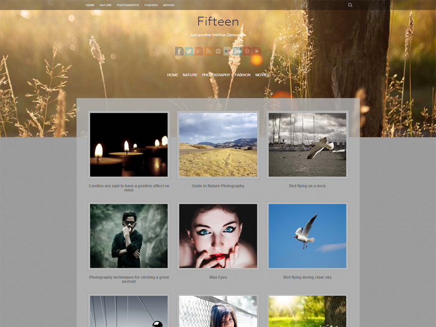 Fifteen WordPress Photography Theme