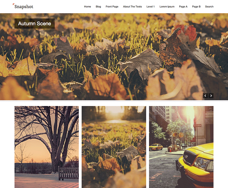 Snapshot WordPress Photography Theme