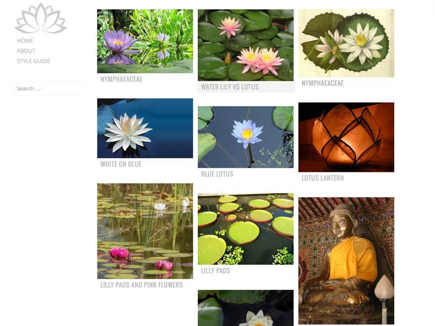 Water Lily WordPress Photography Theme