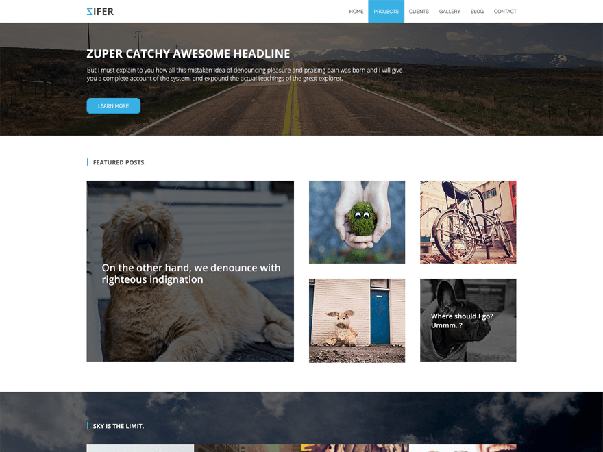 Zifer Child WordPress Photography Theme