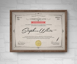 Multipurpose Certificates III