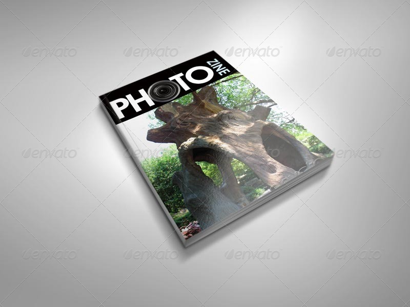 Thick Magazine Mock-ups