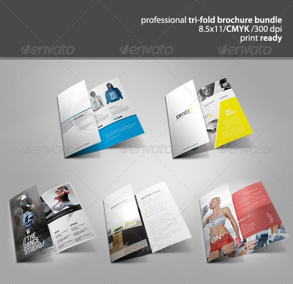 Tri-Fold Brochure Bundle