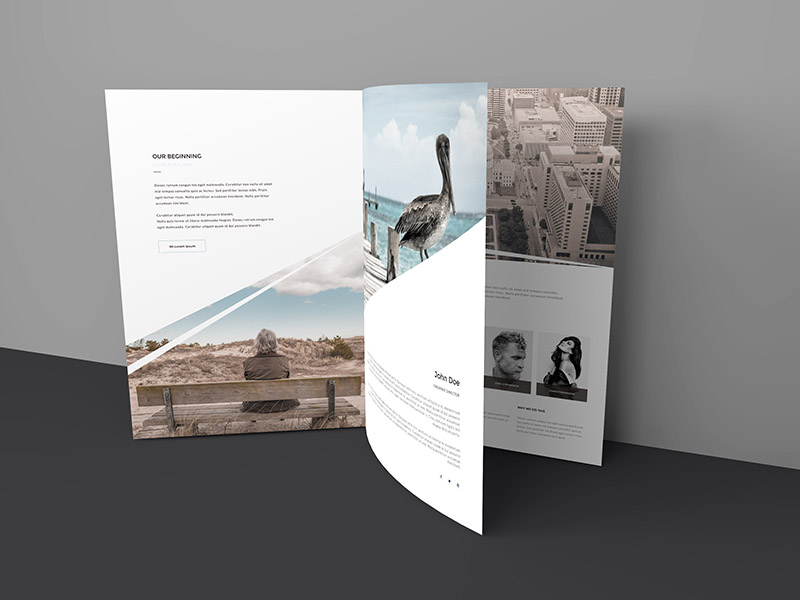 Free Three Page Brochure Mockup