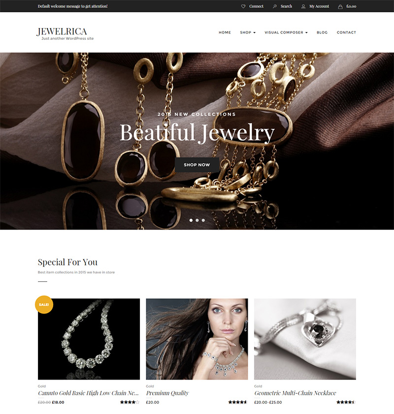 best ever premium ecommerce wordpress themes for sell